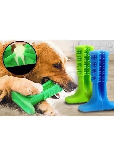 JBL Köpek Diş Fırçası Isırma Aparatı Küçük Boy Renkli